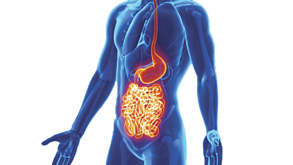 Bệnh viêm ruột và cách điều trị hiệu quả nhất