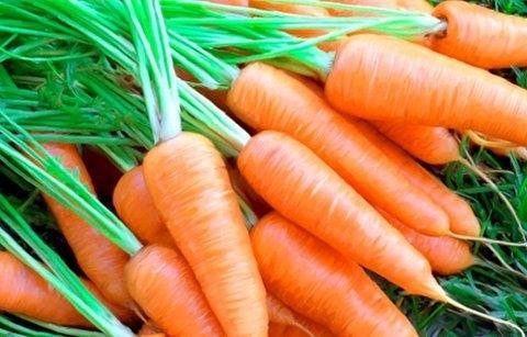 Ăn cà rốt tốt cho người bị rối loạn tiêu hóa