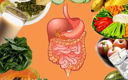 Người bị rối loạn tiêu hóa nên ăn gì và không nên ăn gì?