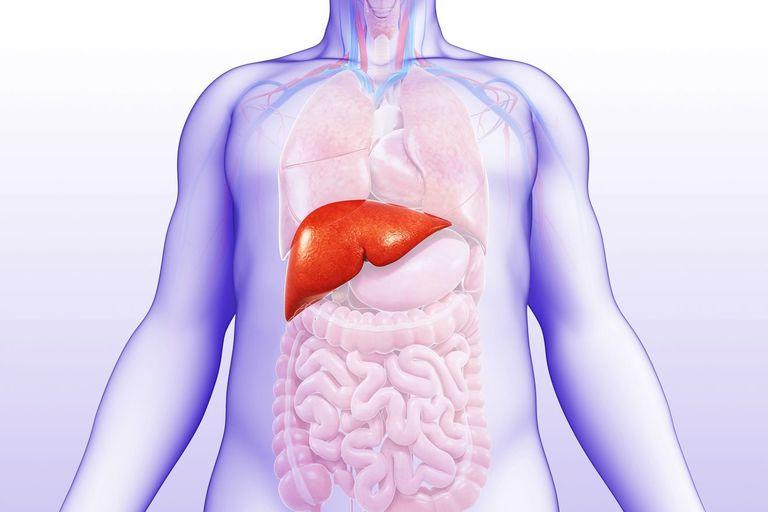 Đi ngoài phân nát do các bệnh về gan